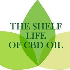 shelf life of cbd oils